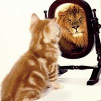 Die Welt spiegelt unsere Signale. So wie wir uns sehen wirken wir.